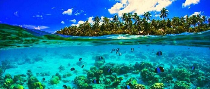 A whole new world – Seychelles!