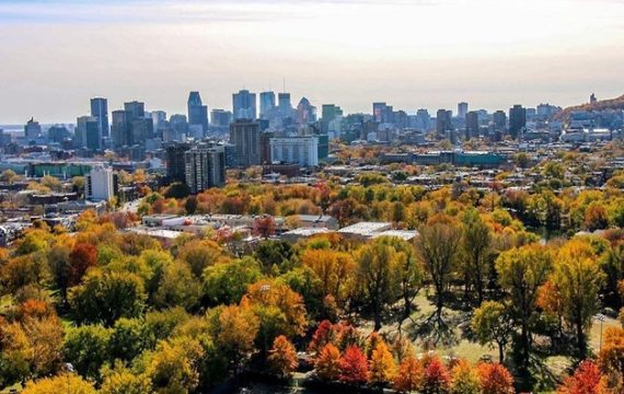 5 best things to do while you are in Montreal